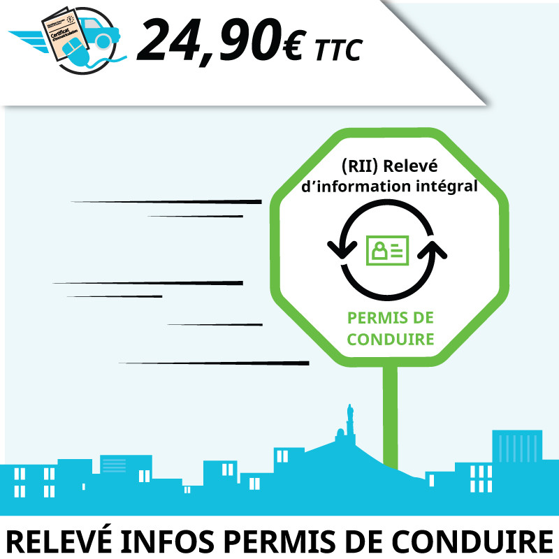 Relevé d'Information Intégral permis de conduire (RII)